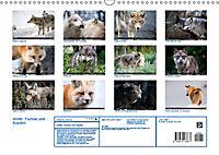 Wölfe, Füchse und Kojoten (Wandkalender 2019 DIN A3 quer) - Produktdetailbild 13