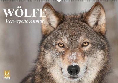 Wölfe. Verwegene Anmut (Wandkalender 2019 DIN A2 quer), Elisabeth Stanzer