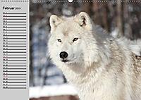Wölfe. Verwegene Anmut (Wandkalender 2019 DIN A2 quer) - Produktdetailbild 2