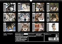 Wölfe. Verwegene Anmut (Wandkalender 2019 DIN A3 quer) - Produktdetailbild 13