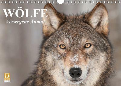 Wölfe. Verwegene Anmut (Wandkalender 2019 DIN A4 quer), Elisabeth Stanzer
