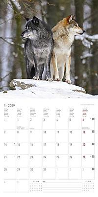 Wölfe / Wolves 2019 - Produktdetailbild 1