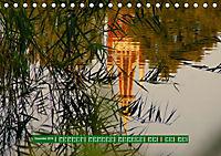 Wörlitzer Park (Tischkalender 2019 DIN A5 quer) - Produktdetailbild 12