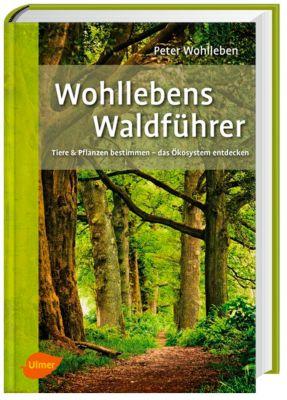 Wohllebens Waldführer - Peter Wohlleben |