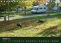 Wohnmobil-Reisen (Tischkalender 2019 DIN A5 quer) - Produktdetailbild 10