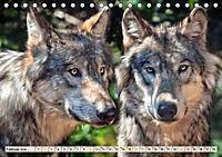 Wolf - Imposanter Jäger (Tischkalender 2019 DIN A5 quer) - Produktdetailbild 2