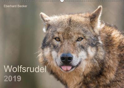 Wolfsrudel (Wandkalender 2019 DIN A2 quer), Eberhard Becker