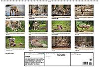 Wolfsrudel (Wandkalender 2019 DIN A2 quer) - Produktdetailbild 13