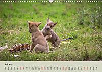 Wolfsrudel (Wandkalender 2019 DIN A3 quer) - Produktdetailbild 7