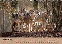 Wolfsrudel (Wandkalender 2019 DIN A3 quer) - Produktdetailbild 11