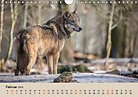 Wolfsrudel (Wandkalender 2019 DIN A4 quer) - Produktdetailbild 2