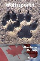 Wolfsspuren, Wolf Stein