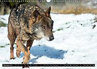 Wolves, Wild Spirits (Wall Calendar 2019 DIN A3 Landscape) - Produktdetailbild 2