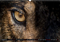 Wolves, Wild Spirits (Wall Calendar 2019 DIN A3 Landscape) - Produktdetailbild 8