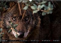 Wolves, Wild Spirits (Wall Calendar 2019 DIN A3 Landscape) - Produktdetailbild 10