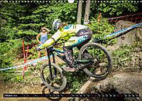 Women Downhill Racing (Wandkalender 2019 DIN A3 quer) - Produktdetailbild 10