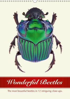 Wonderful Beetles (Wall Calendar 2019 DIN A3 Portrait), Wildlife Art Print