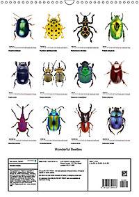 Wonderful Beetles (Wall Calendar 2019 DIN A3 Portrait) - Produktdetailbild 13