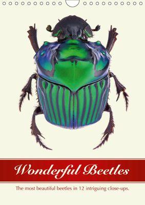 Wonderful Beetles (Wall Calendar 2019 DIN A4 Portrait), Wildlife Art Print