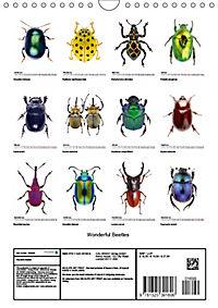 Wonderful Beetles (Wall Calendar 2019 DIN A4 Portrait) - Produktdetailbild 13
