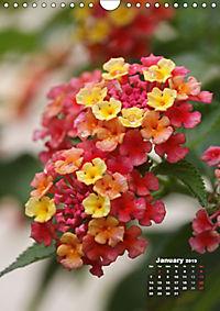 Wonderful Summer Flowers (Wall Calendar 2019 DIN A4 Portrait) - Produktdetailbild 1