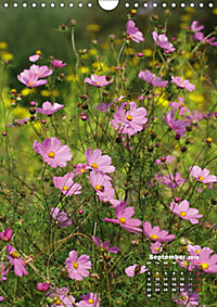 Wonderful Summer Flowers (Wall Calendar 2019 DIN A4 Portrait) - Produktdetailbild 9