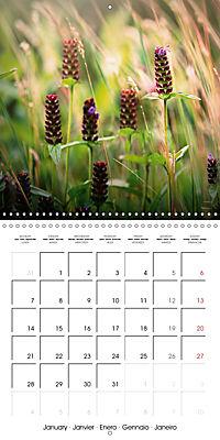 Wonderful Wildflowers (Wall Calendar 2019 300 × 300 mm Square) - Produktdetailbild 1