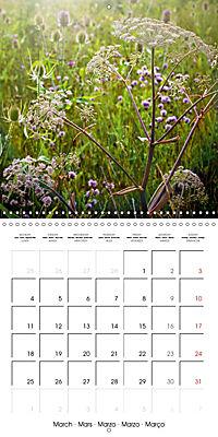 Wonderful Wildflowers (Wall Calendar 2019 300 × 300 mm Square) - Produktdetailbild 3