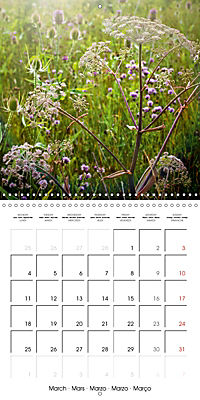 Wonderful Wildflowers (Wall Calendar 2019 300 × 300 mm Square) - Produktdetailbild 3