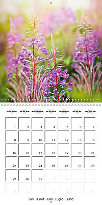 Wonderful Wildflowers (Wall Calendar 2019 300 × 300 mm Square) - Produktdetailbild 7
