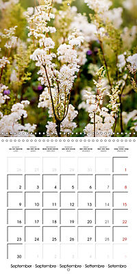 Wonderful Wildflowers (Wall Calendar 2019 300 × 300 mm Square) - Produktdetailbild 9