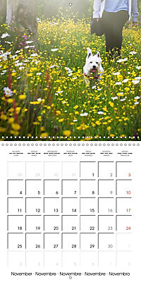 Wonderful Wildflowers (Wall Calendar 2019 300 × 300 mm Square) - Produktdetailbild 11