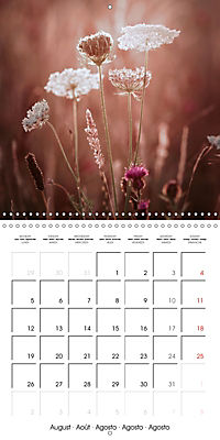 Wonderful Wildflowers (Wall Calendar 2019 300 × 300 mm Square) - Produktdetailbild 8