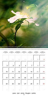 Wonderful Wildflowers (Wall Calendar 2019 300 × 300 mm Square) - Produktdetailbild 6
