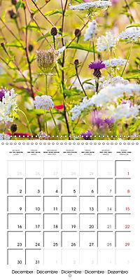Wonderful Wildflowers (Wall Calendar 2019 300 × 300 mm Square) - Produktdetailbild 12