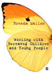 Working with Bereaved Children and Young People, Brenda Mallon