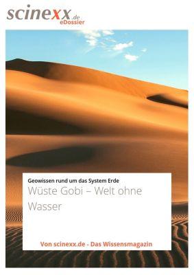Wüste Gobi, Dieter Lohmann