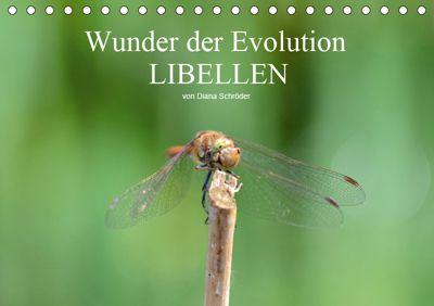 Wunder der Evolution Libellen (Tischkalender 2019 DIN A5 quer), Diana Schröder