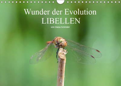 Wunder der Evolution Libellen (Wandkalender 2019 DIN A4 quer), Diana Schröder