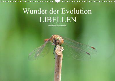 Wunder der Evolution Libellen (Wandkalender 2019 DIN A3 quer), Diana Schröder