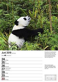 Wunder der Natur 2019 - Produktdetailbild 12