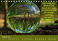 Wunderbare Waldkugeln (Tischkalender 2019 DIN A5 quer) - Produktdetailbild 2