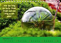 Wunderbare Waldkugeln (Tischkalender 2019 DIN A5 quer) - Produktdetailbild 9