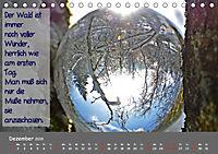 Wunderbare Waldkugeln (Tischkalender 2019 DIN A5 quer) - Produktdetailbild 12
