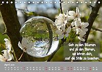 Wunderbare Waldkugeln (Tischkalender 2019 DIN A5 quer) - Produktdetailbild 4
