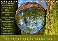 Wunderbare Waldkugeln (Tischkalender 2019 DIN A5 quer) - Produktdetailbild 5
