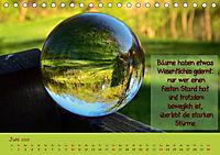 Wunderbare Waldkugeln (Tischkalender 2019 DIN A5 quer) - Produktdetailbild 6