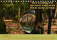 Wunderbare Waldkugeln (Tischkalender 2019 DIN A5 quer) - Produktdetailbild 11