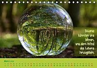 Wunderbare Waldkugeln (Tischkalender 2019 DIN A5 quer) - Produktdetailbild 3