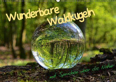 Wunderbare Waldkugeln (Wandkalender 2019 DIN A2 quer), Ilona Stark-Hahn